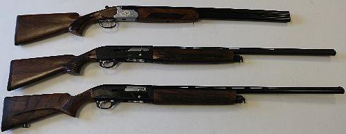 3 ружья.jpg